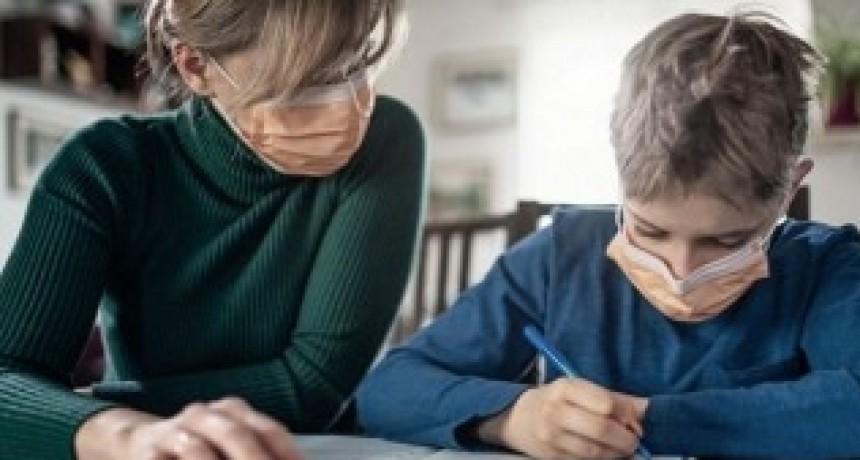 El Senado debate en comisión el proyecto de Ley sobre Educación a Distancia