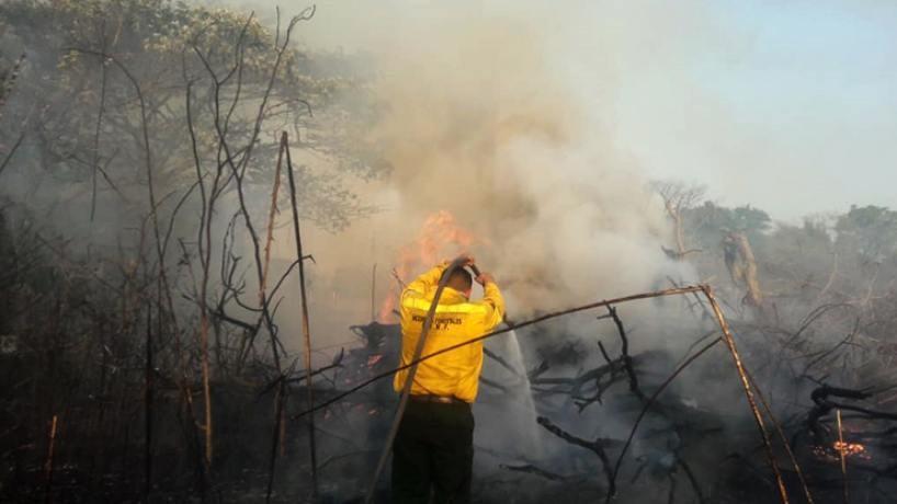 Estas son las zonas más afectadas por la quema de pastizales en Tucumán
